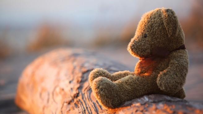 teddy-bear-photography-bokeh-1920x1080